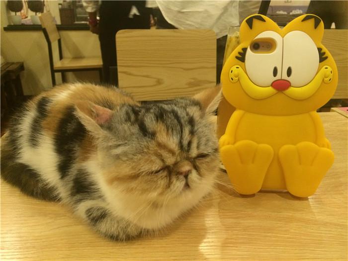 Garfield01