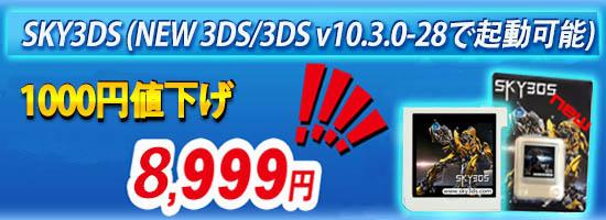 SKY3DS1110